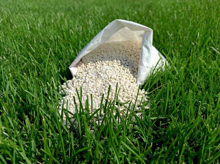 Does Fertilizer Go Bad or Expire?