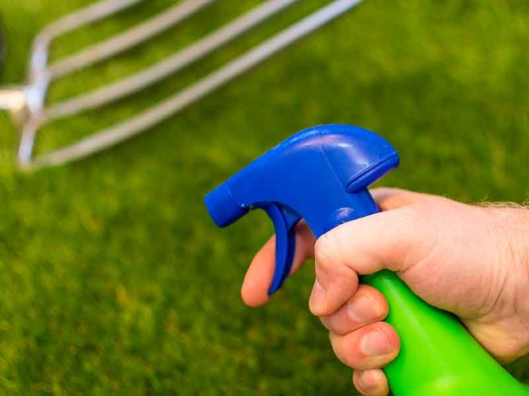 How Long After Weed Killer Can I Plant Grass Seed?