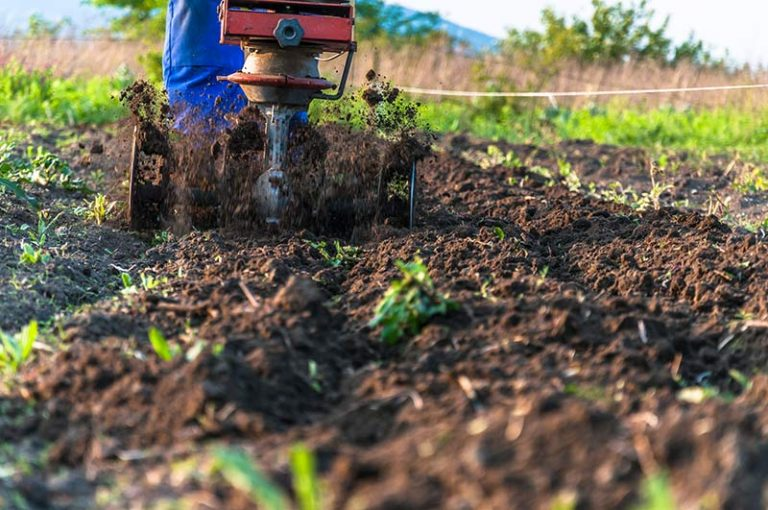 Tilling Soil: What is Tilling and How to Till Soil Step-by-Step
